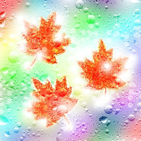 Illustration. Autumn maple leaf and drops of rain. illustration