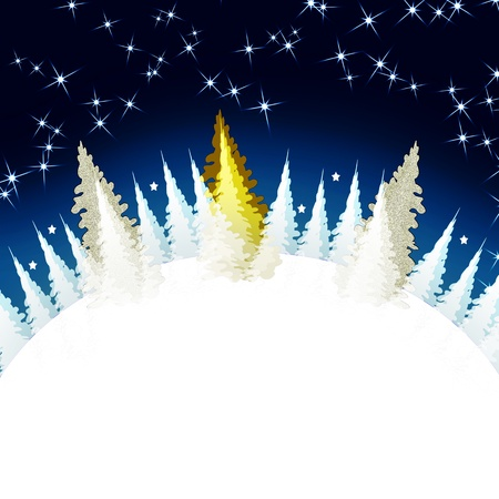Christmas  Winter Forest  Illustration  illustration