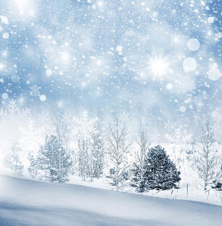 paysage hiver: Paysage d'hiver. Winter Forest. Banque d'images