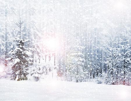 Winter. Sneeuwval. Stockfoto