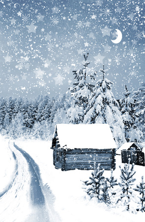 The village in winter forest photo