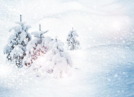 snow scenes: Winter. Snowfall.