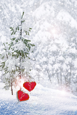 frippery: Trees in the snow. Heart. Stock Photo