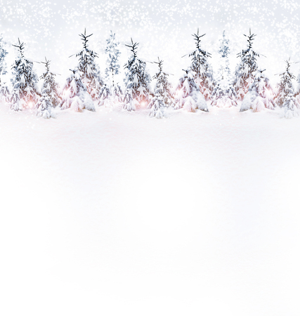 snowflake background: Winter Forest. Winter landscape.