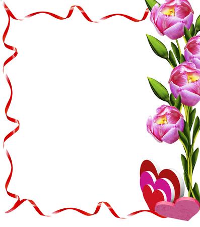 tulips flowers isolated on white background photo