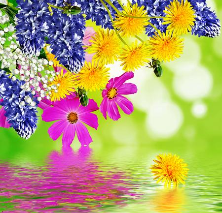 Summer landscape. floral background. photo