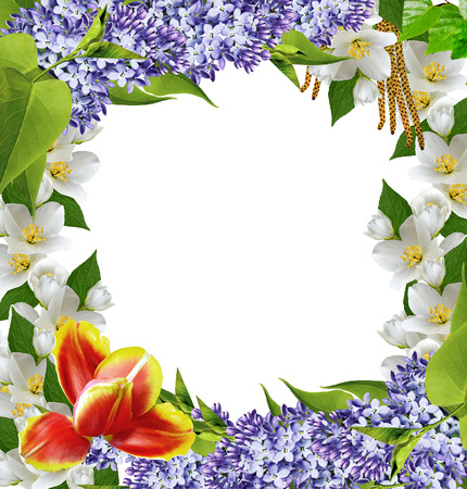 Spring flowers frame photo