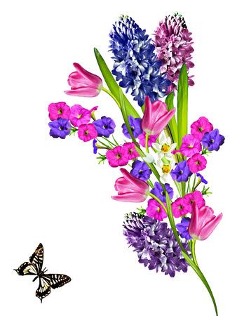 tulipan: wiosenne kwiaty tulipanów na białym background.snowdrops kwiatów i motyli Zdjęcie Seryjne