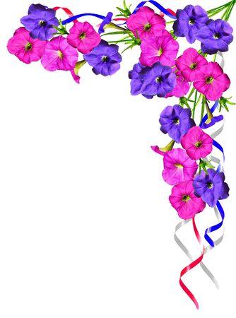 흰색 배경에 고립 나팔꽃 꽃