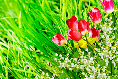 Spring flowers daffodils and tulips. lily of the valley photo