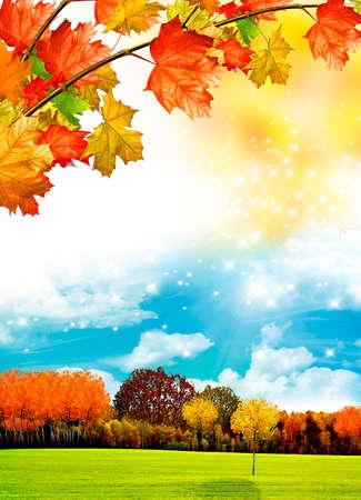 yeşillik: sonbahar yaprakları Stok Fotoğraf
