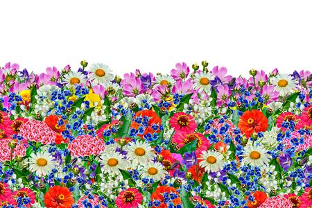 bouquet fleurs: arri?re-plan floral