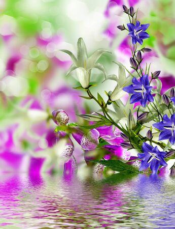 considerable: Summer landscape. flowers bells
