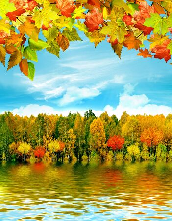 autumn landscape Reklamní fotografie