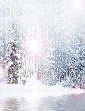 snowfall: Winter. Snowfall.