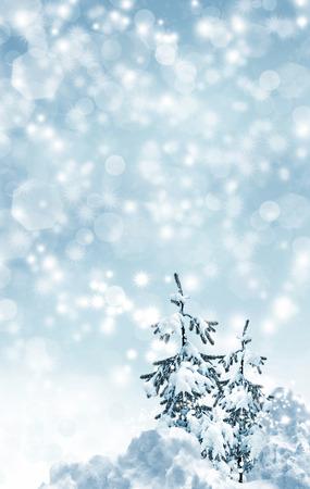paysage hiver: