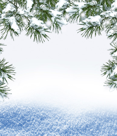 snow forest: Background of snow. Winter landscape. Photo. Stock Photo