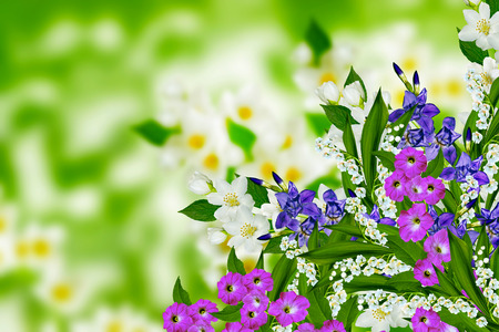 lily flowers: jasmine flowers, iris and lily of the valley Stock Photo