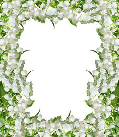 flor de lis: La rama de lirios de los valles florece aislados en fondo blanco Foto de archivo