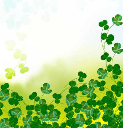 leafed: Green clover leaves on a background summer landscape. St.Patrick s Day