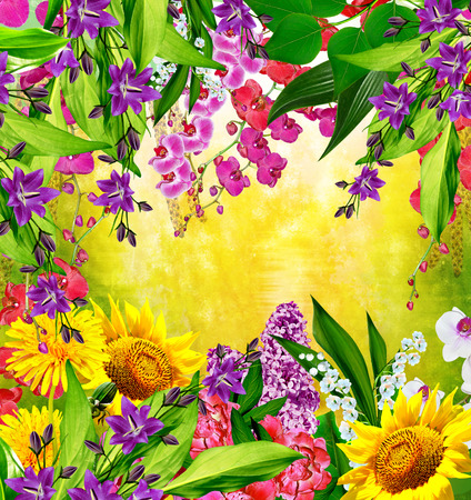 path to romance: Multi colored beautiful flowers. Floral background.