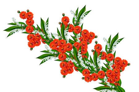 lily of the valley: Zinnias flowers isolated on white background. delicate flowers Stock Photo