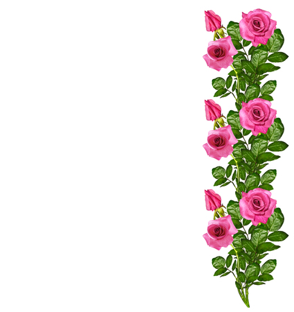 cadre: The buds of flowers roses. Holiday card