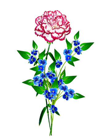 path to romance: Bouquet of flowers carnation. Flowers isolated on white background.