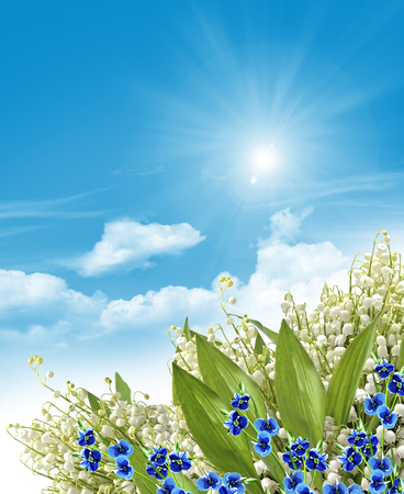 lily of the valley: Floral background. Flowers forget me.  lilies of the valley Stock Photo
