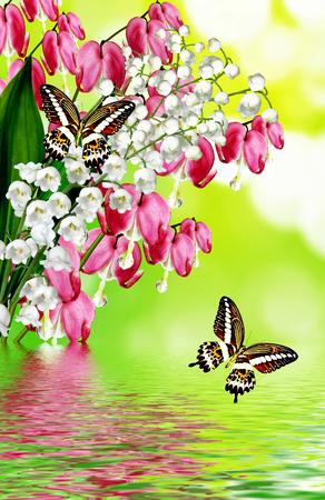 heart flower: pink bleeding heart flower. butterfly