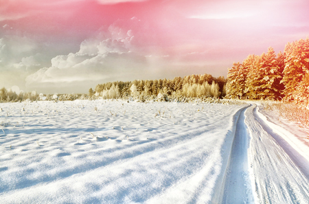 winter photos: Photos of the winter woods. landscape. Snow covered trees Stock Photo