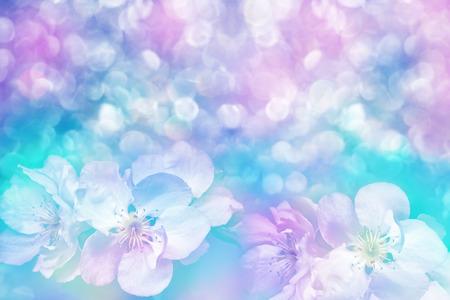 Krajobraz wiosny. Kwitnienie jabłoni. Wiosna kwitnienia ogród. tło
