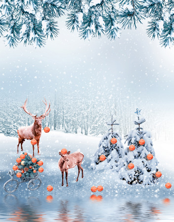 forest in the frost. Winter landscape. Collage of photos of fir trees and deer.