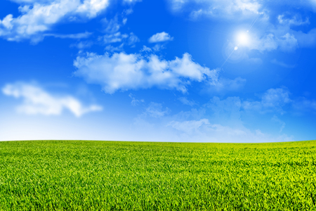 blue summer sky: Meadow with green grass on a background of blue sky with clouds Stock Photo