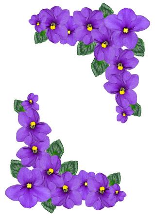 Boeket van kleurrijke bloemen van violen geïsoleerd op een witte achtergrond