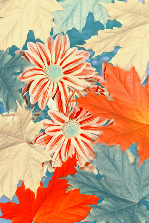 Autumnal abstract background of bright colorful foliage