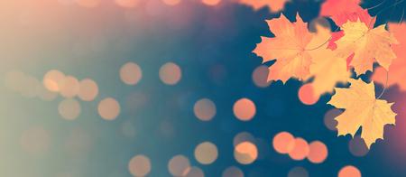 Paisaje de otoño con follaje de colores brillantes. Verano indio. Foto de archivo