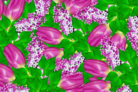 Natural floral background. spring flowers tulips. lilac.