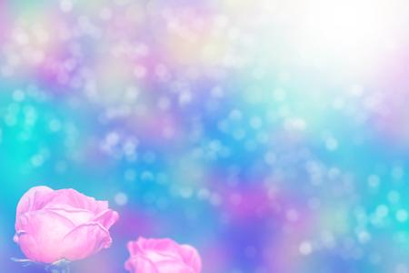 Summer landscape. Delicate wild rose garden flowers Banque d'images