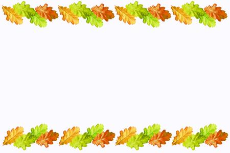 Blätter auf weißem Hintergrund. Goldener Herbst