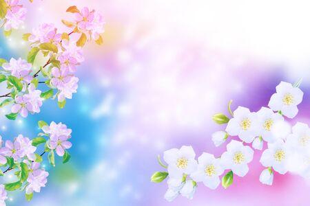 Floreciente rama de manzana. Flores de primavera coloridas y brillantes