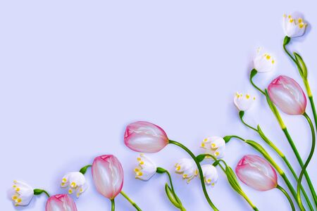 Natural floral background from spring flowers of snowdrops. tulips