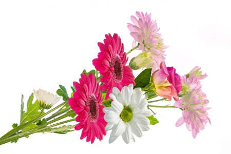 Colorful vibrant flowers of chrysanthemum, gerbera, roses isolated on a white background. Floral bouquet