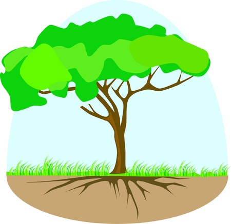 Tree vector with roots and herbs isolated on white Illustration