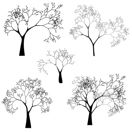 birch forest: Set of Tree Silhouettes