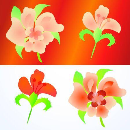Ornate flowers set isolated on white Stock Vector - 17294063