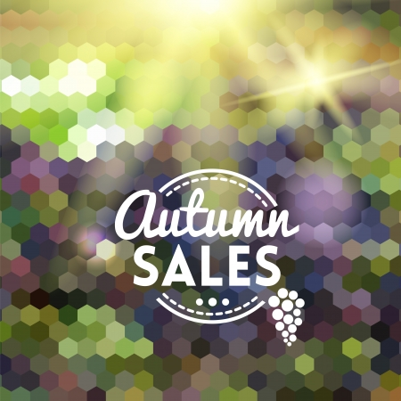 Colorful geometric background card with grape wine autumn sales Vector