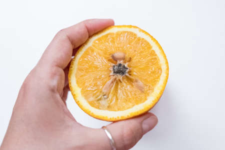 Spoiled orange. The black middle inside the fruit Imagens