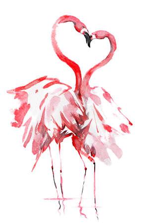 beautiful couple of flamingo kissing