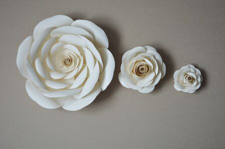 Paper flowers for wall and interior decoration. The flowers are handmade.